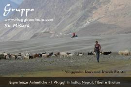 Foto India, Valle di Nubra, Ladakh
