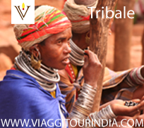 viaggi Tribali in India